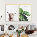 Norwegian Shaggy Cow Canvas Print - Unframed
