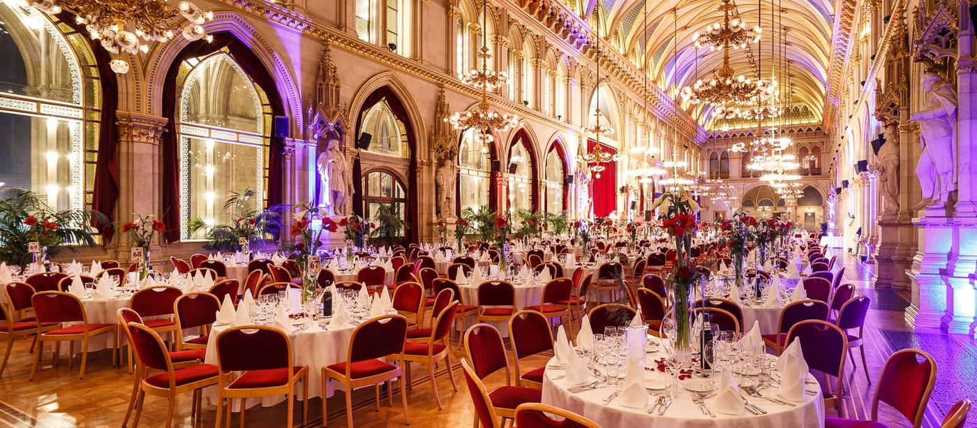 New Year's Eve Gala in Vienna City Hall