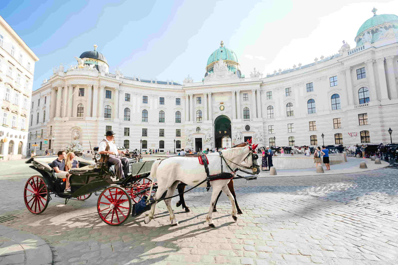 Carriage ride through Vienna