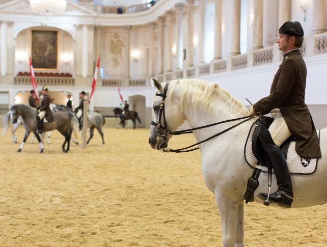 Lipizzaner Stallions perform, classical music, marches, Viennese Philharmonic Orchestra