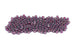 Kerrie Berrie UK Seed Beads for Jewellery Making Size 6 Seed Beads in Transparent Grape Purple