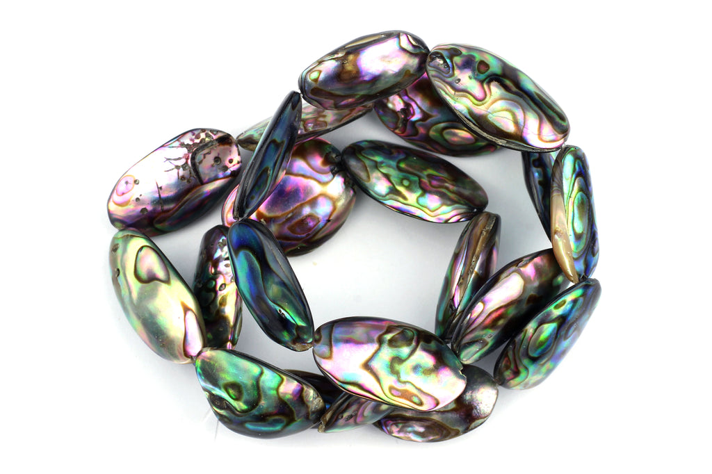 Kerrie Berrie Semi Precious Abalone Beads Strand for Jewellery Making