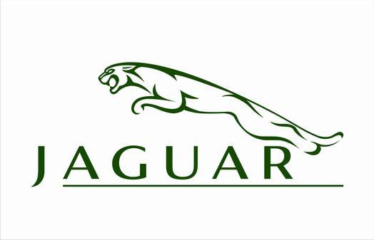 Jaguar Flag-3x5 FT-100% polyester Banner-Green-Black - flagsshop