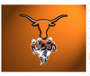 Longhorn Texas Flag,free shipping Texas Longhorns Rugby club banner, 90*150CM polyster - flagsshop
