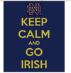 Notre Dame flag ,sales exhibition Brand,100% Polyester 90x150cm Activity show banner,flag king,Digital printing