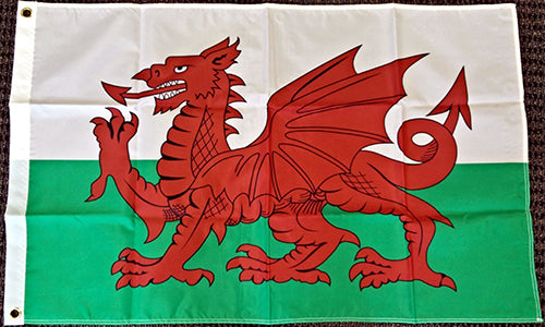 Cardiff City FC Wales Flag Welsh Dragon Banner-3x5 Australian New South Wales FT Banner-100% polyester-2 Metal Grommets - flagsshop