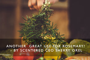Another  great use for rosemary! - BY SCENTERED CEO SHERRY OREL