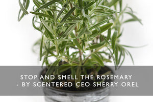 Stop and Smell the Rosemary - By SCENTERED CEO Sherry Orel
