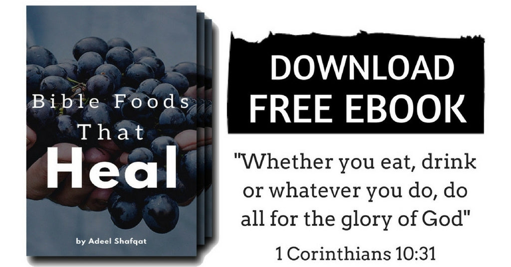Bible Foods That Heal - Download Free E-Book