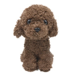 Dark Brown Poodle - 50pcs