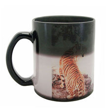 11oz Dino Matte  Color Change Mug-48pcs