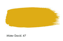 Little Greene - 47. Mister David