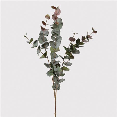 LARGE NATURAL BLUSH EUCALYPTUS SPRAY