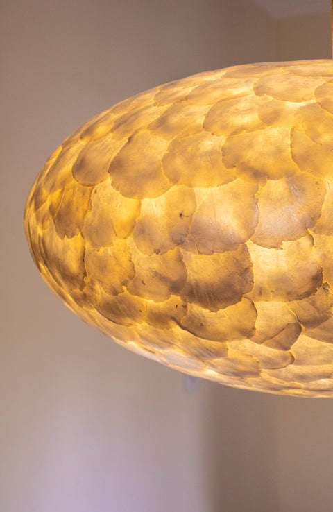 unique amroth ovo ceiling shade - Handcrafted oyster shell lamps