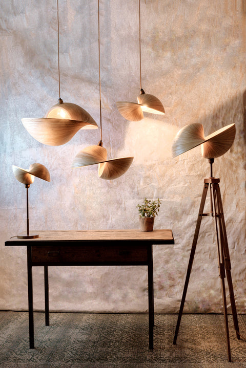 Unusual bamboo lighting. Handcrafted eco-friendly lamps and ceiling pendants by Collectiviste.