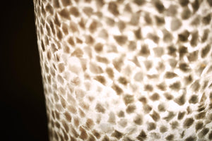 Elara Floor Lamp by Collectiviste - Unique Mother of pearl Shell Lamp