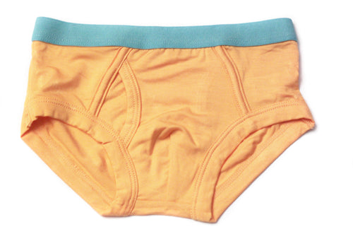 Boys Bamboo Underwear (Orange) - Toddler, kids, baby
