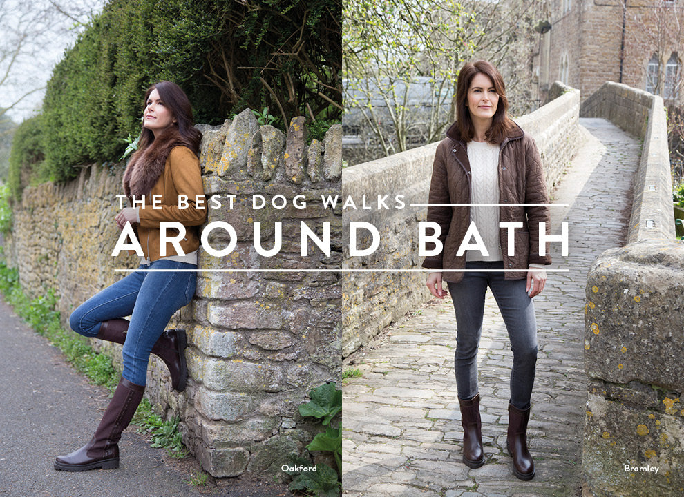 Best Dog Walks Around Bath