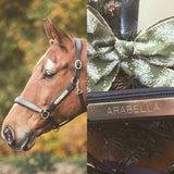 Aviemore Leather Nameplate headcollar - 2 colours