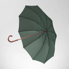 A classic quality umbrella in green