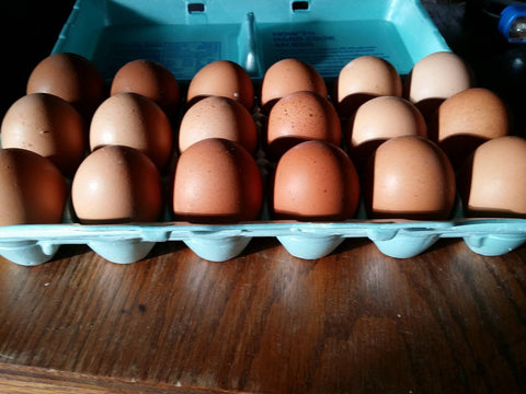 Dozen Large Brown Eggs