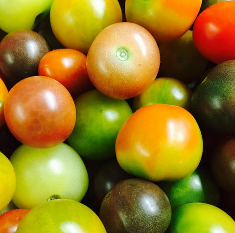Heirloom Rainbow Cherry Tomatoes