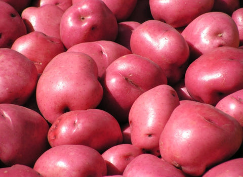 24 lb box red potatoes
