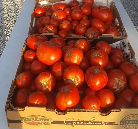 Canning Tomatoes (25lb box)