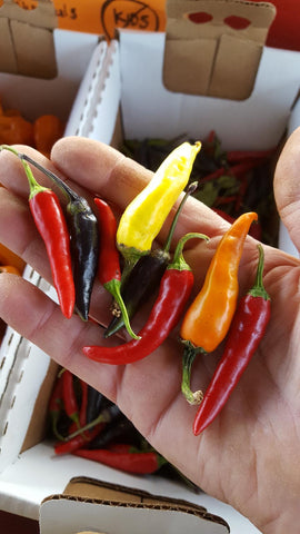 Mixed Cayenne Peppers (5)