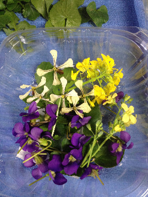Spring Edible Flowers in a Clamshell