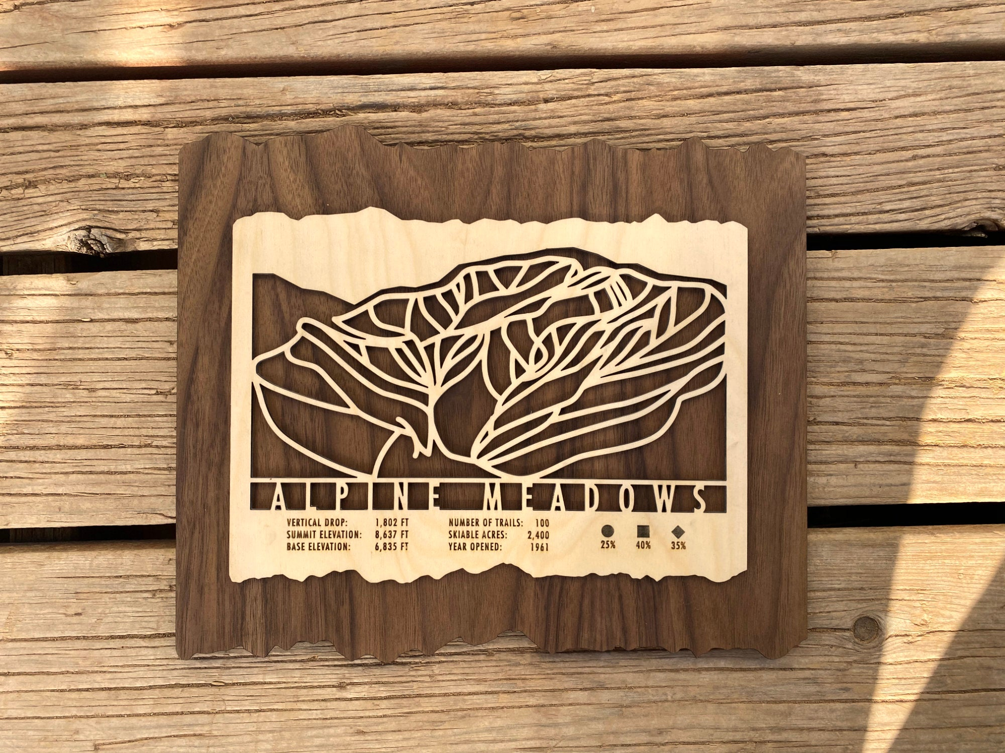Alpine Meadows Ski Decor Trail Map Art