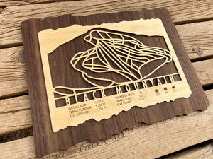 Black Mountain Ski Decor Trail Map Art