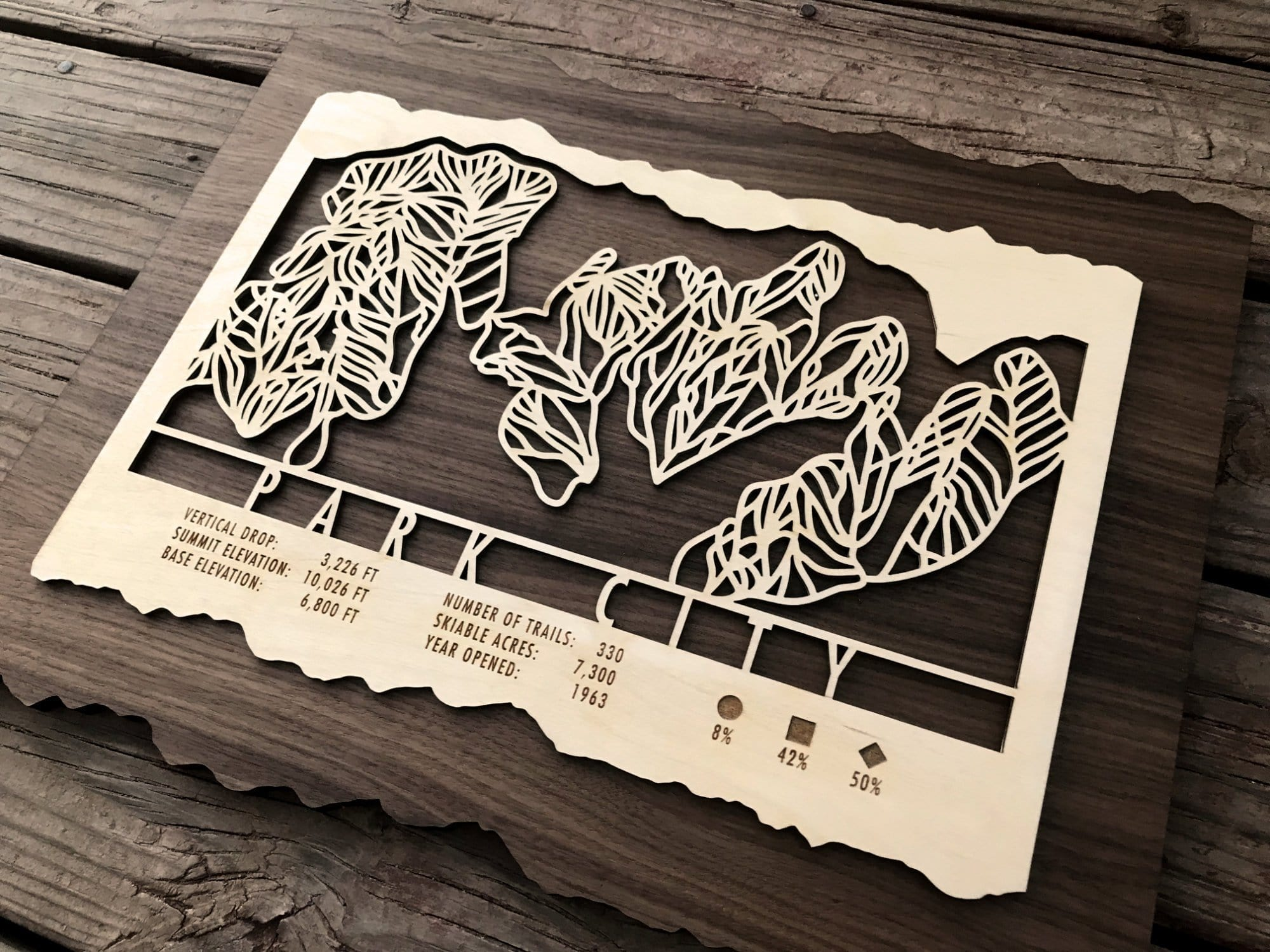 Park City Ski Decor Trail Map Art - MountainCut