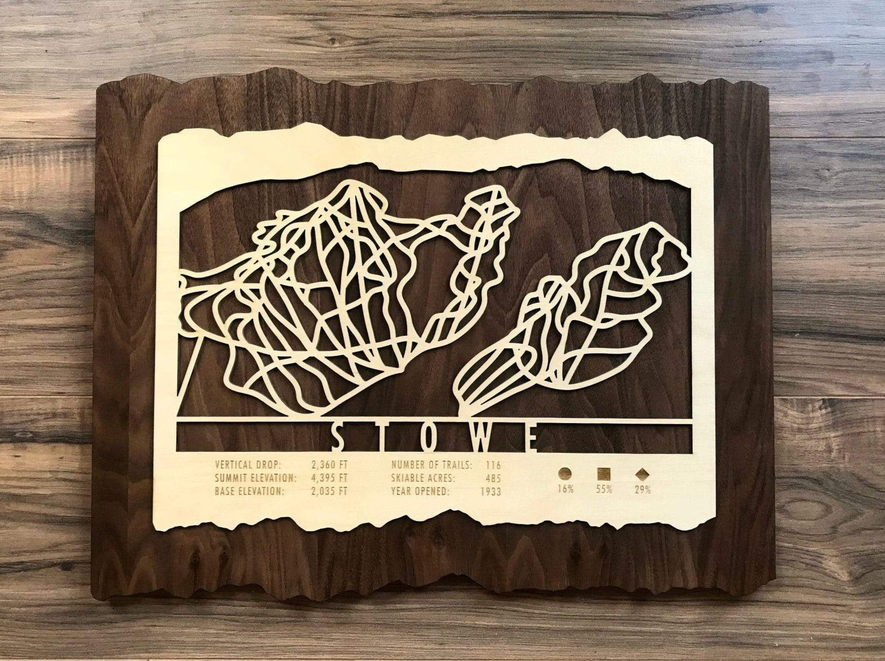 Stowe Ski Decor Trail Map Art - MountainCut