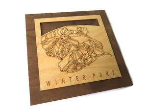 Winter Park Wooden Ski Decor Snowboard Ski Art | Winter Park Colorado | Housewarming Ski House Decor Ski Gifts - MountainCut