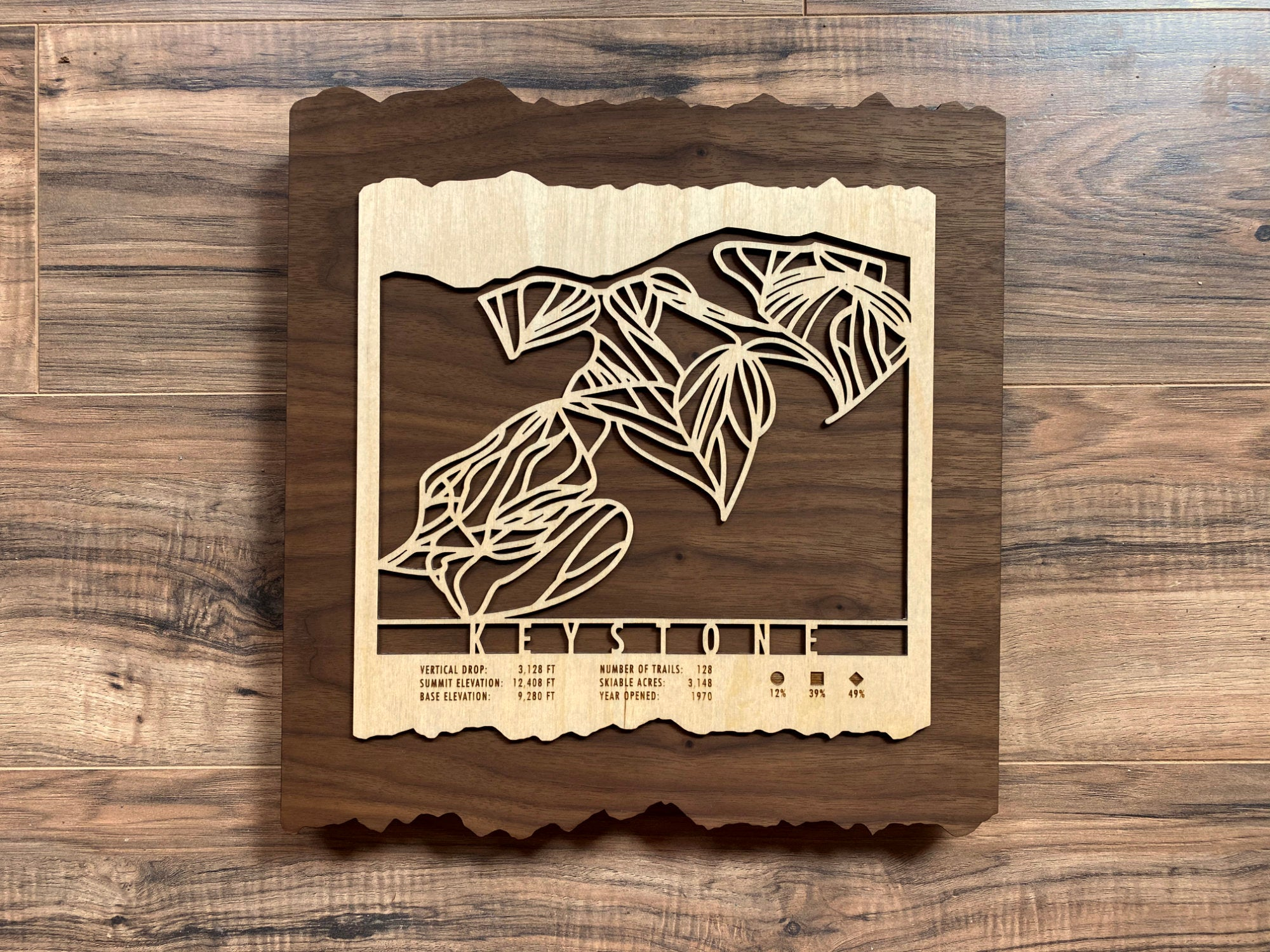 Keystone Ski Decor Trail Map Art