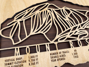 Mount Rose Ski Decor Trail Map Art