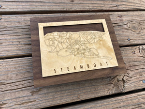Steamboat Small Ski Decor Trail Map Art