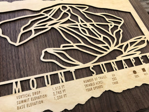 Mount Sunapee Ski Decor Trail Map Art - MountainCut