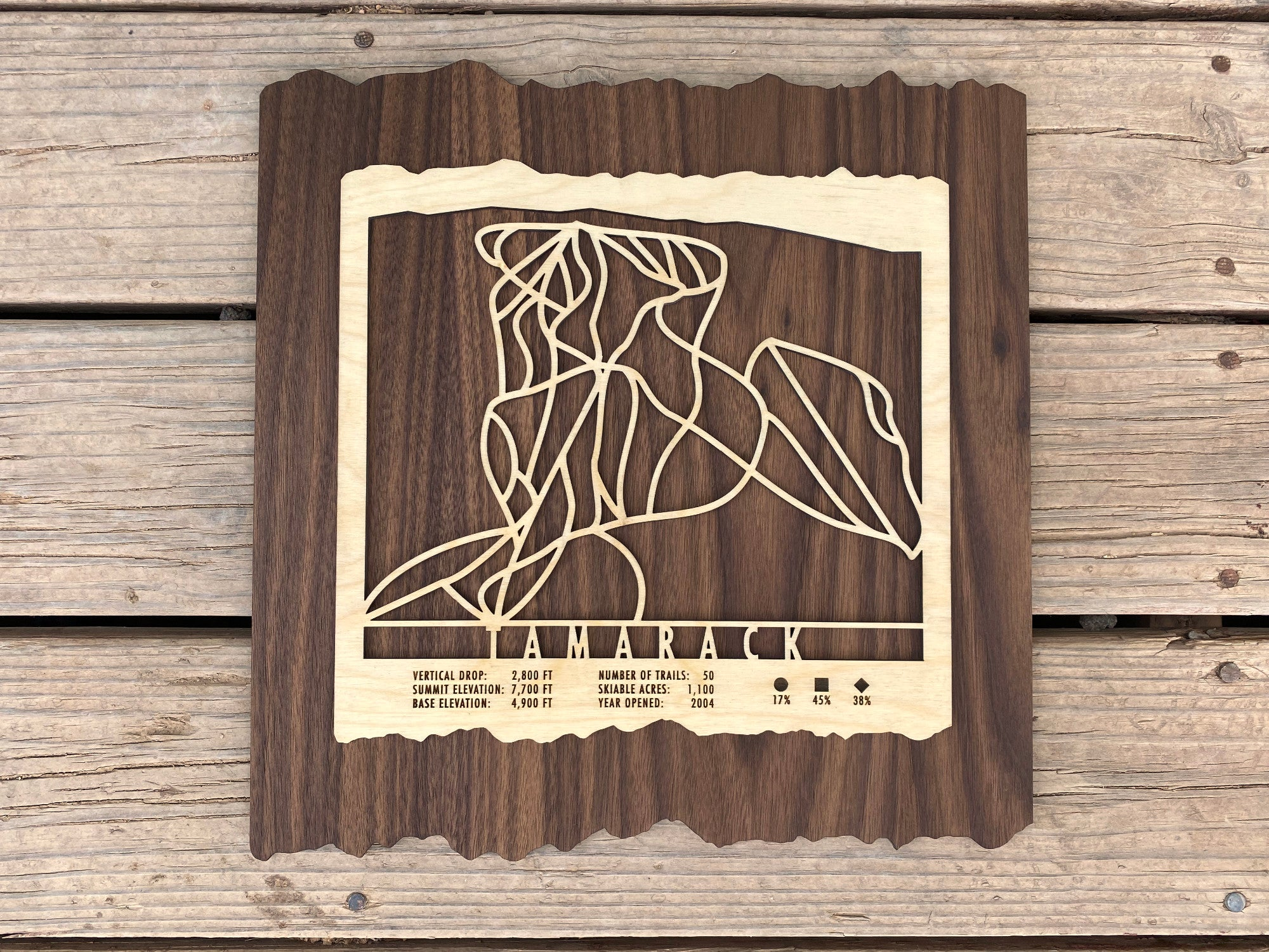 Tamarack Ski Decor Trail Map Art