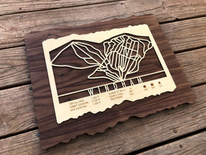 Windham Mountain Ski Decor Trail Map Art - MountainCut