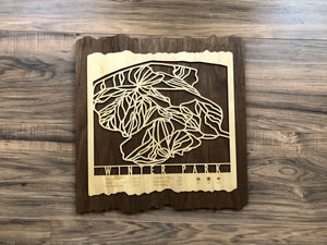 Winter Park Ski Decor Trail Map Art - MountainCut