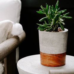 BLOSSOM | MEDIUM PLANTER