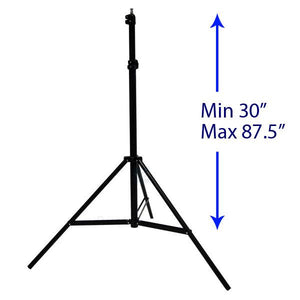 Photograph Video Continuous Flash lighting Hair Boom Light Stand Kit with Saddle Bag, AGG673