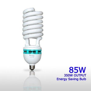 85 Watt Daylight Balanced Compact Fluorescent Light Bulb, AGG873