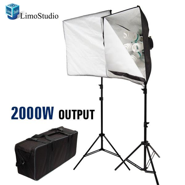 2000W Daylight Photo Studio Digital Video Softbox Lighting Kit with Carry Case, LMS390