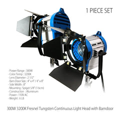300W Fresnel Tungsten Light Head with Barn Door and Mount Bracket for Photography and Video Lighting by Loadstone Studio
