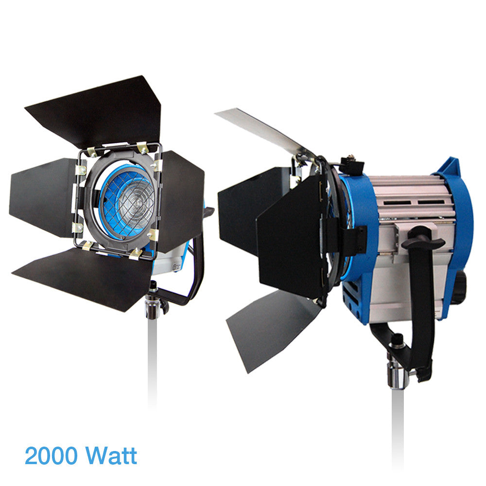 Loadstone Studio 2000 Watt Studio Light Head, 2 x Film and Television Tungsten Fresnel Continuous Light Spotlight, Barn Door, Photo Video Studio, 1000 Watt x2,