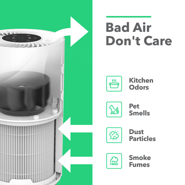 Large Room Home Air Purifier with True HEPA Filter