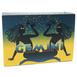Project Genius Gemini Puzzlebox